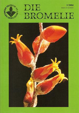 DIE BROMELIE - 2004(3).jpg