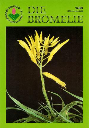 DIE BROMELIE - 1988(1).jpg