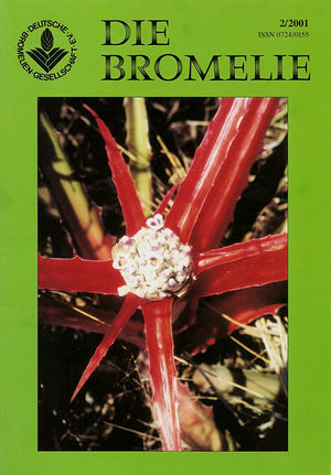 DIE BROMELIE - 2001(2).jpg