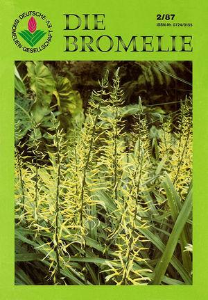 DIE BROMELIE - 1987(2).jpg