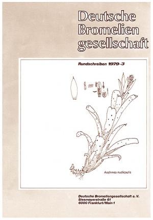 Rundschreiben - 1979-3.jpg