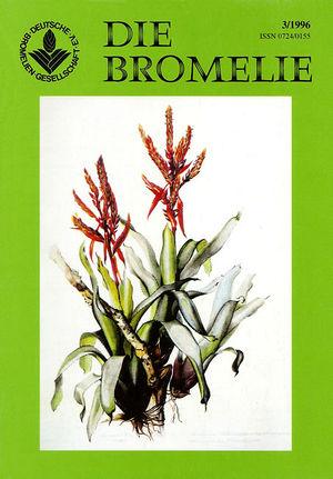 DIE BROMELIE - 1996(3).jpg