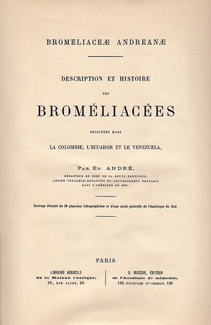 Andre - Bromeliaceae Andreanae.jpg