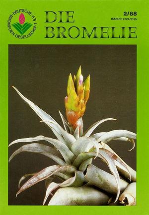 DIE BROMELIE - 1988(2).jpg
