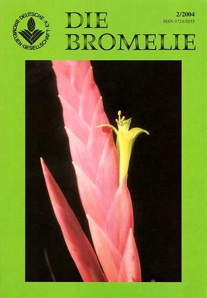 DIE BROMELIE - 2004(2).jpg