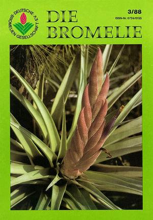 DIE BROMELIE - 1988(3).jpg