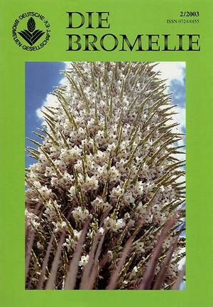 DIE BROMELIE - 2003(2).jpg