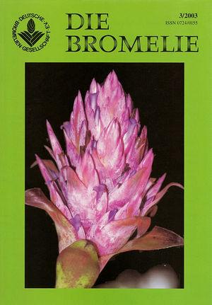 DIE BROMELIE - 2003(3).jpg