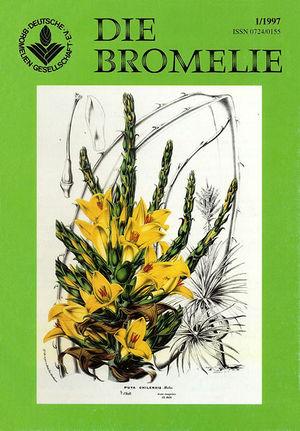 DIE BROMELIE - 1997(1).jpg