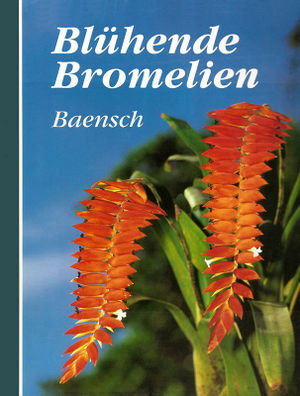 Baensch - Bluehende Bromelien.jpg
