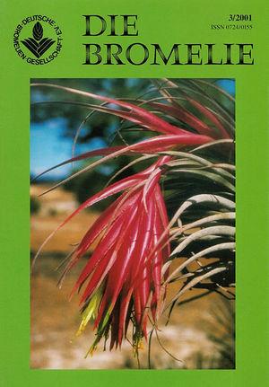 DIE BROMELIE - 2001(3).jpg