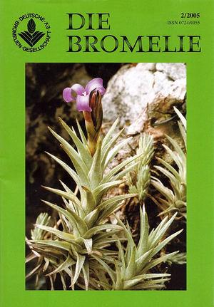 DIE BROMELIE - 2005(2).jpg