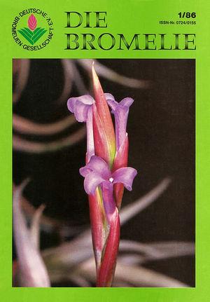 DIE BROMELIE - 1986(1).jpg