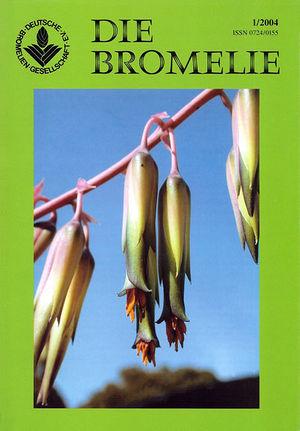 DIE BROMELIE - 2004(1).jpg