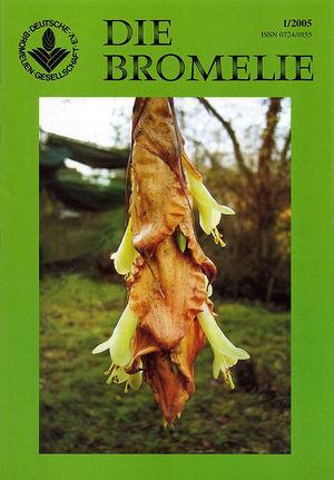 DIE BROMELIE - 2005(1).jpg