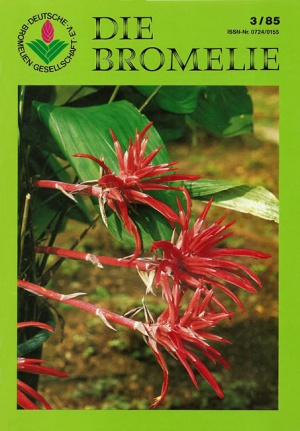 DIE BROMELIE - 1985(3).jpg