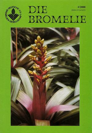 DIE BROMELIE - 2000(3).jpg