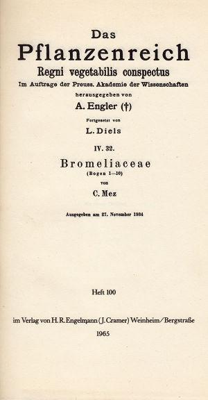 Mez - Bromeliaceae.jpg