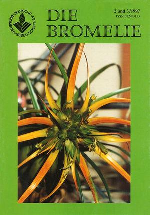 DIE BROMELIE - 1997(2-3).jpg