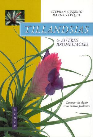 Cuzenic - Tillandsias.jpg