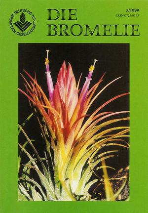 DIE BROMELIE - 1999(3).jpg