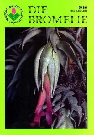 DIE BROMELIE - 1986(3).jpg
