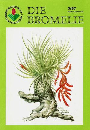 DIE BROMELIE - 1987(3).jpg