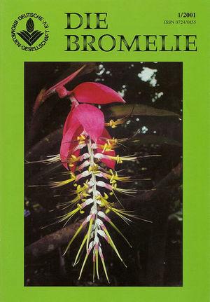 DIE BROMELIE - 2001(1).jpg