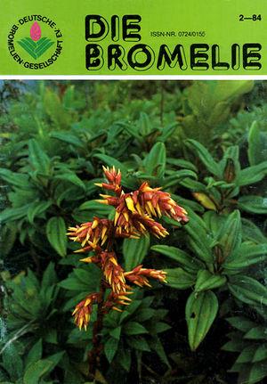 DIE BROMELIE - 1984(2).jpg