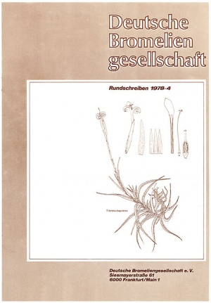 Rundschreiben - 1978-4.jpg