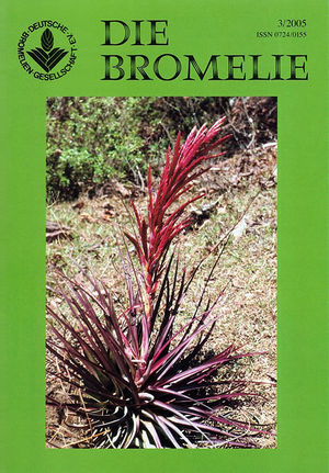 DIE BROMELIE - 2005(3).jpg