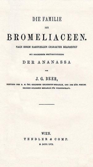 Beer - Die Familie der Bromeliaceen.jpg